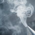 Bee Smoker With Smoke-10