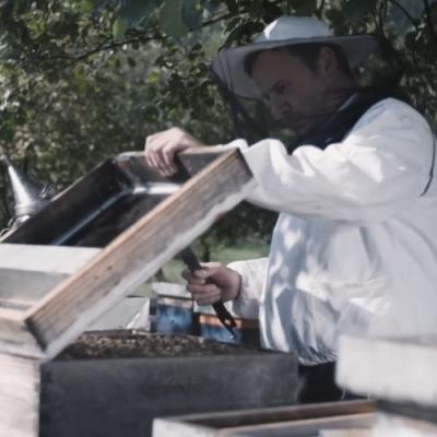 Beekeeper Opening His Beehive-12
