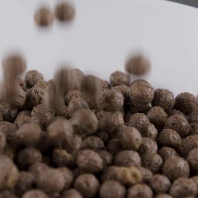 Bowl Of Chocolate Cereals-16